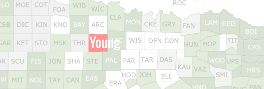 Young County Map